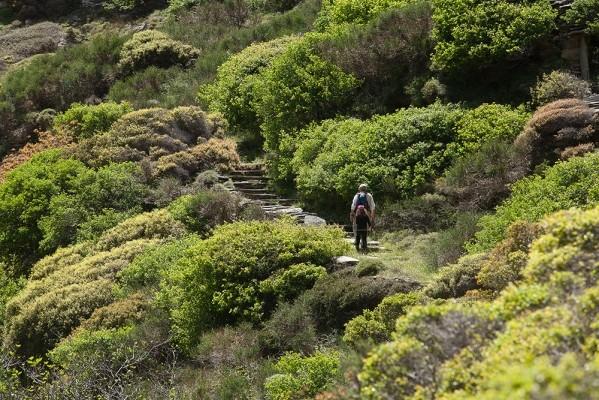 Η κοιλάδα των Διποτάματων έχει χαρακτηρισθεί προστατευόμενη περιοχή.