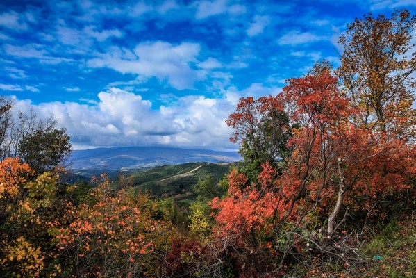 Φθινοπωρινή φύση στο Μαυροβούνι.