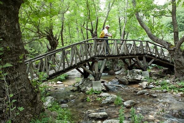 Ένα από τα εξαιρετικά ξύλινα γεφυράκια που συνδέουν τις όχθες του Νυβρίου ποταμού.