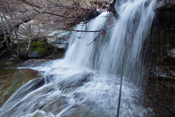 Το νερό τρέχει άφθονο από τις ράχες του Πετάλου. Δύσκολα πιστεύουμε πως βρισκόμαστε στις Κυκλάδες.