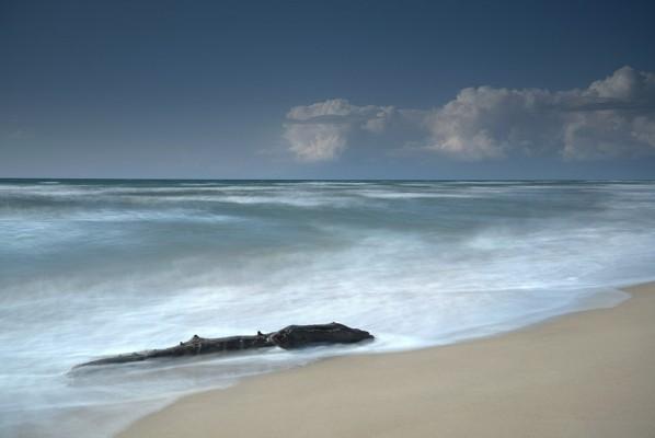 Αμμουδερή παραλία