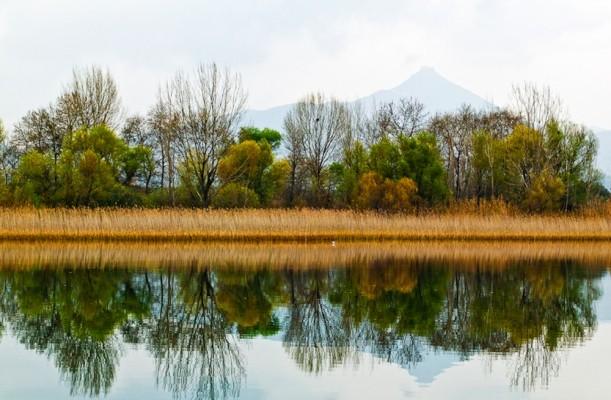 Καθρεφτίσματα στην λίμνη. Δέντρα, καλαμιώνες και ακρόπολη του Βλοχού.