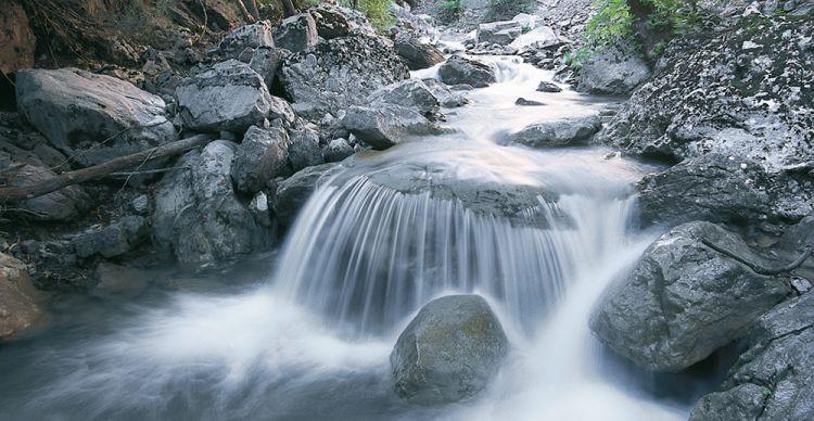 Ασπροπόταμος Τρικάλων