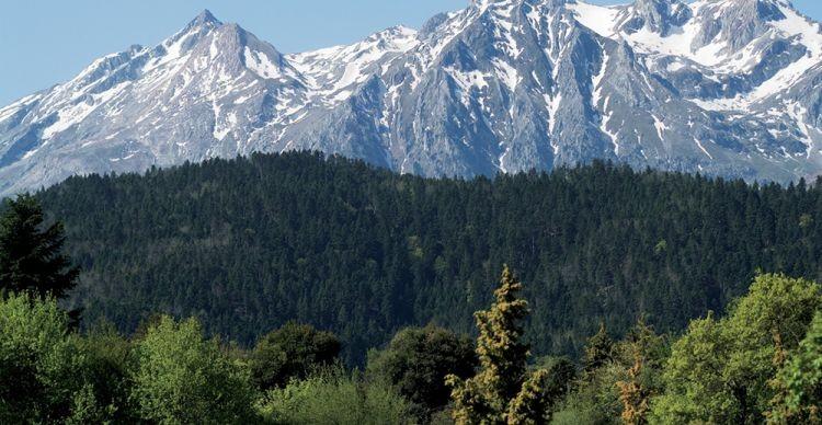 Ορεινή Φωκίδα