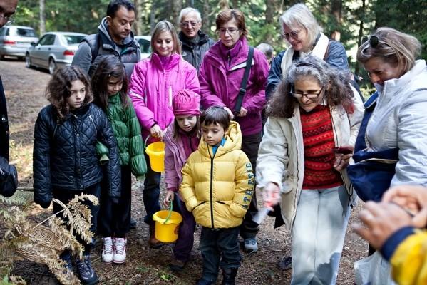Για τα μικρά, ιδιαίτερα, παιδιά η περιπλάνηση στο δάσος, ο εντοπισμός και η συλλογή των μανιταριών είναι μια διαδικασία πολύ συναρπαστική.