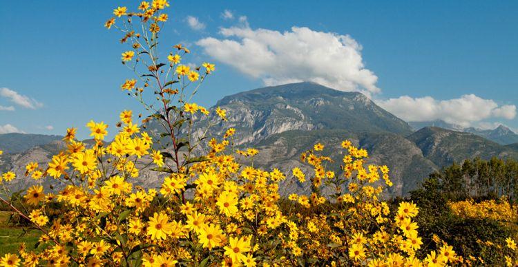 Όρος Πίνοβο