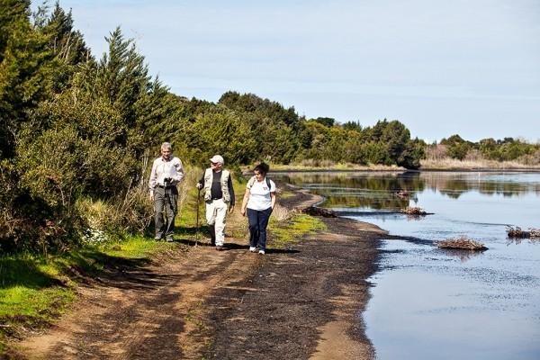 Ο περίπατος στο περιβαλλοντικό μονοπάτι της Λιμνοθάλασσας Κορισσίων είναι ήπιος και ξεκούραστος