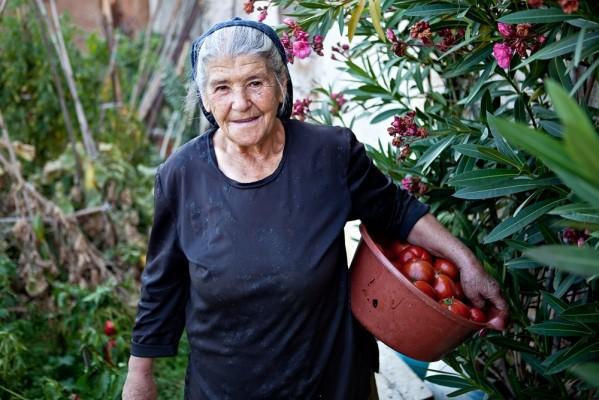 Η κυρα Πολυξένη Καλαϊτζίδου, εξακολουθεί στις αρχές του Οκτώβρη να μαζεύει ώριμες ντομάτες