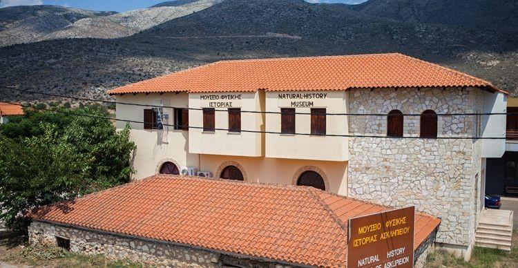 Μουσείο Κωτσιομύτη