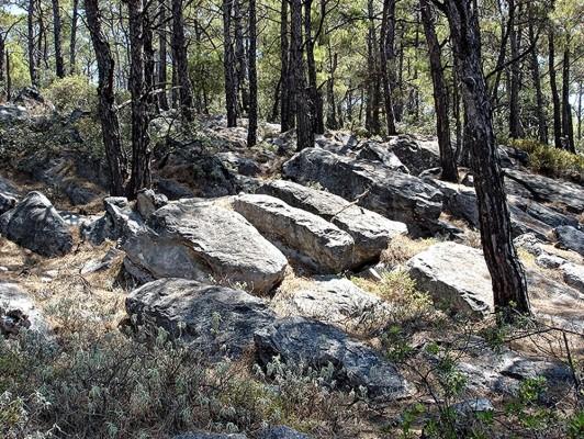 Τμήμα λατομείου στον λόφο του Αγίου Φωκά.