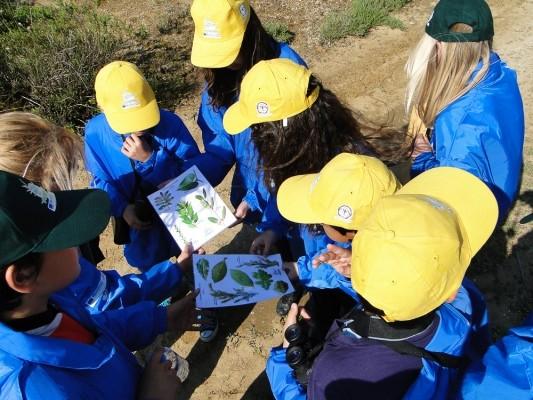 Η περιβαλλοντική εκπαίδευση με το ΚΠΕ Κέρκυρας σε πλήρη εξέλιξη.