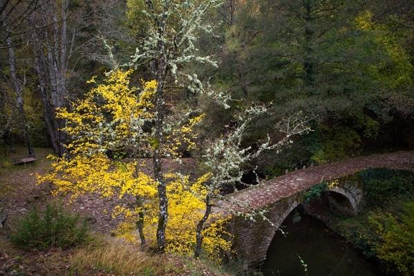 Το γεφύρι του Ντέρη