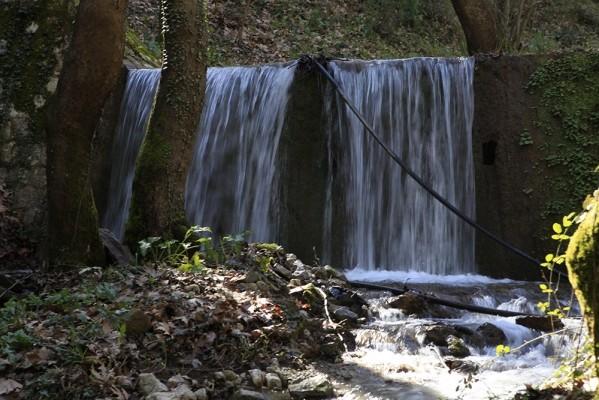 Το ολοζώντανο ρέμα του Κοτιτσάνη,