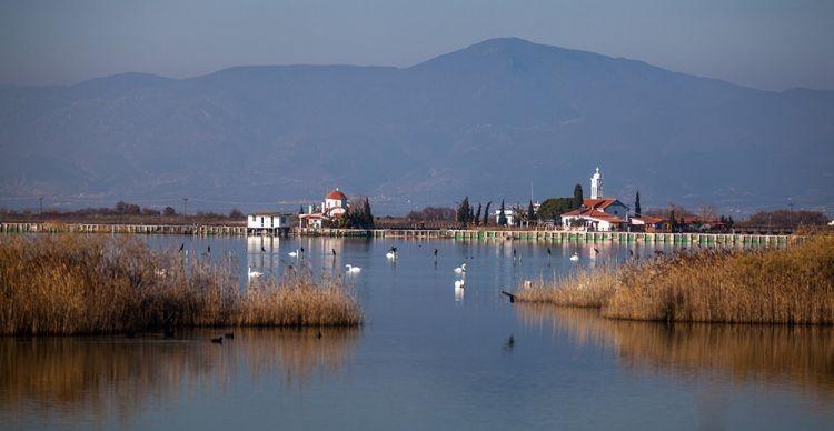 Λιμνοθάλασσες της Θράκης