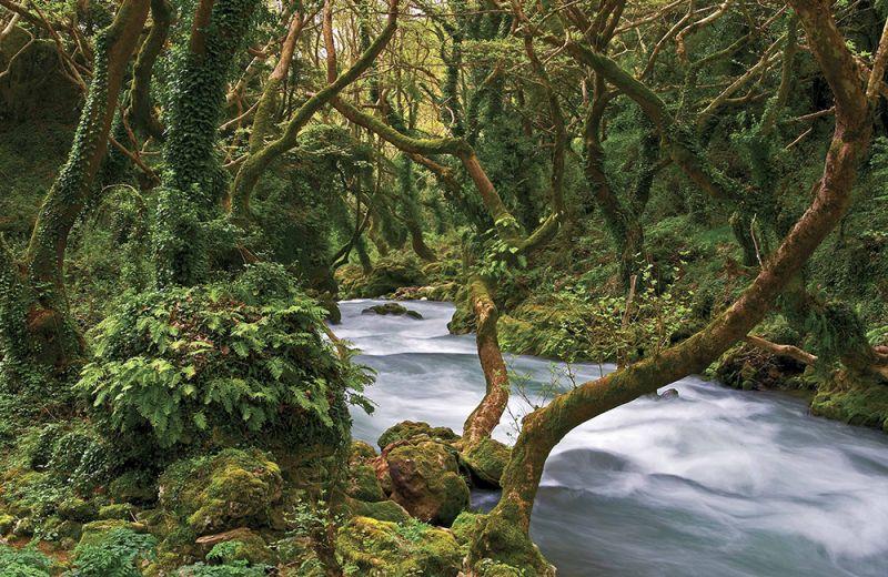 Νησί  Παμβώτιδας- Θύαμις Ποταμός- Κατσανοχώρια