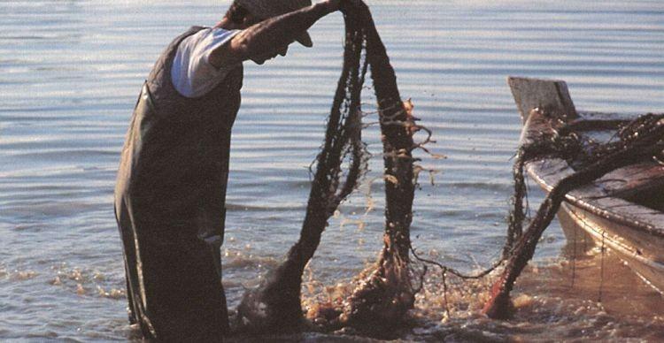 Οι ψαράδες της Νέας Κίου