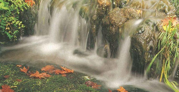 Πλατανάκια.Μια όαση στο Πανόραμα Θεσσαλονίκης